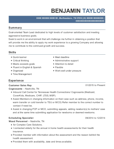 Customer Sales Rep resume template Tennessee