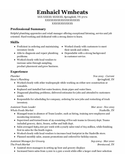 Plumber resume template Tennessee