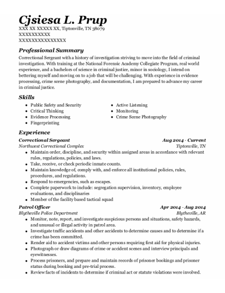 Correctional Sergeant resume sample Tennessee