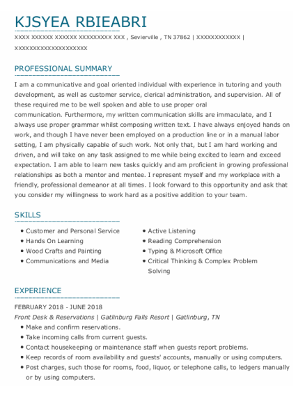 Financial Service Representative resume example Tennessee