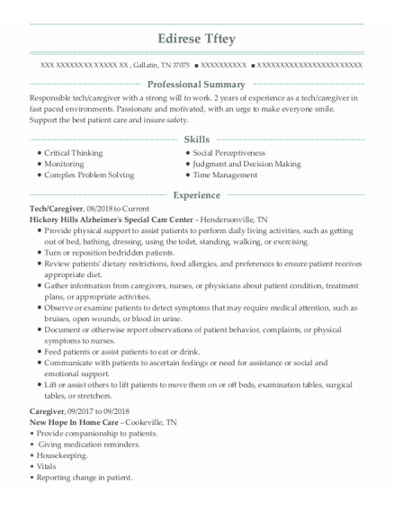 Tech resume sample Tennessee