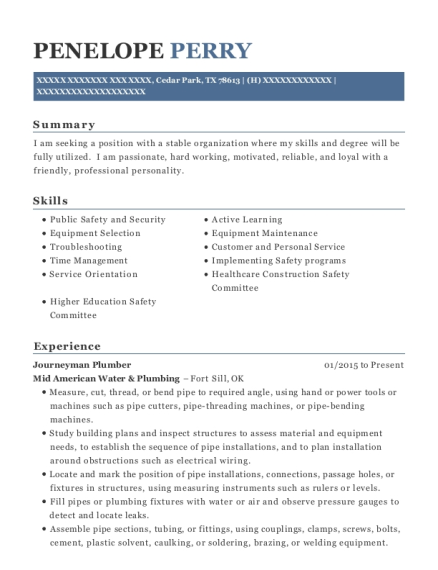 Journeyman Plumber resume example Texas