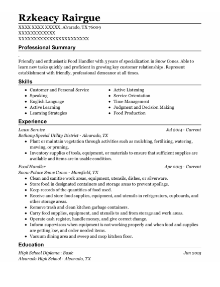 Lawn Service resume example Texas