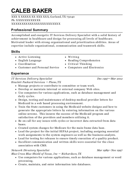 IT Services Delivery Specialist resume sample Texas