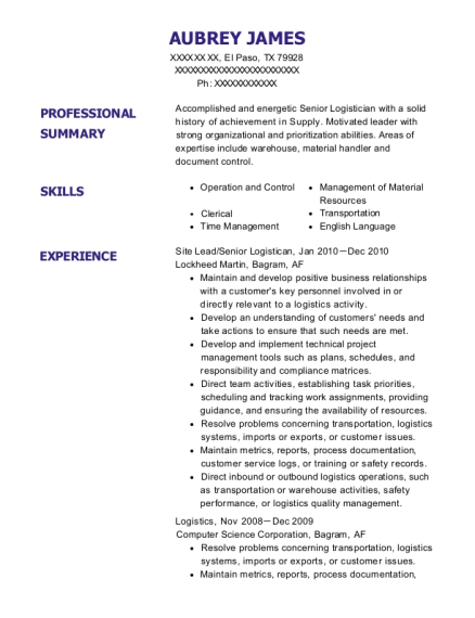 Site Lead resume template Texas