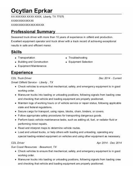 CDL Truck Driver resume format Texas