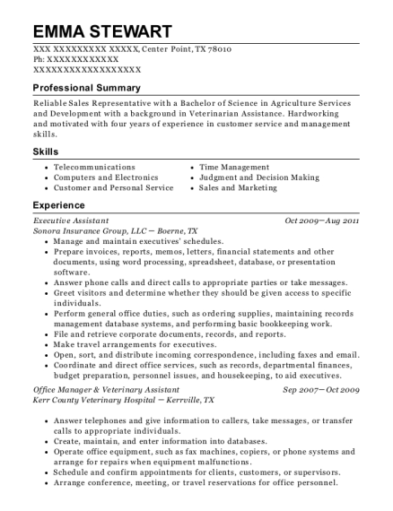 Executive Assistant resume template Texas