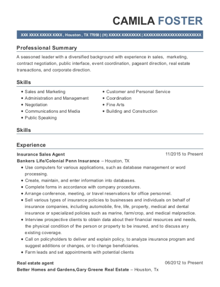 Insurance Sales Agent resume template Texas