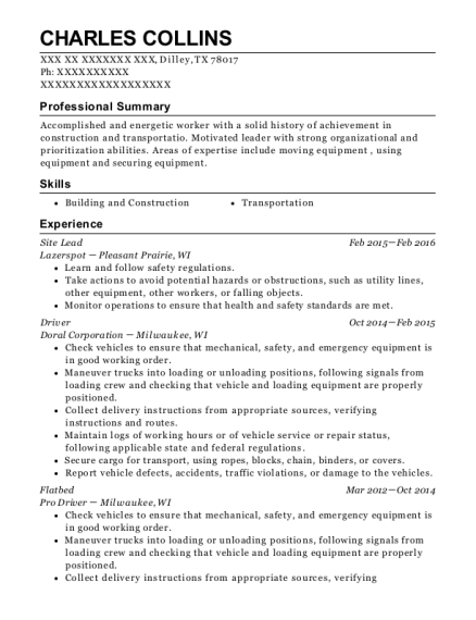 Site Lead resume sample Texas