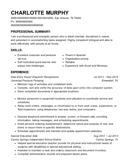 Data Entry Keyer resume sample Texas