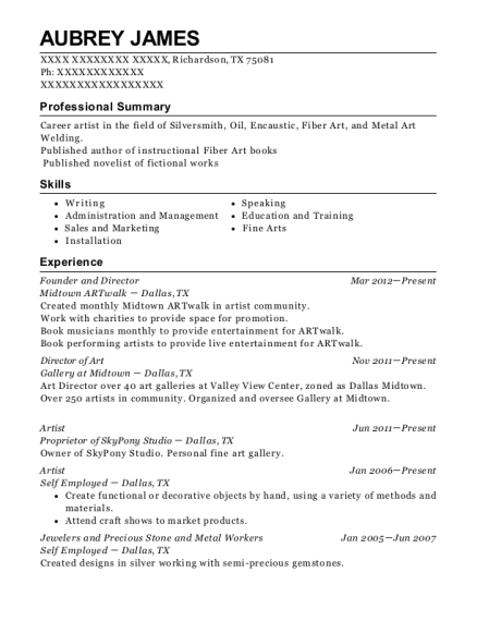 Founder and Director resume example Texas