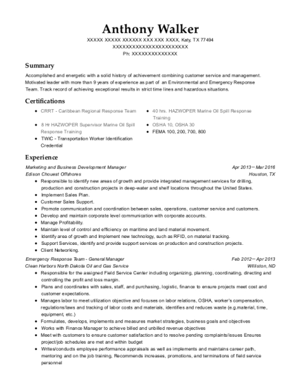 Marketing and Business Development Manager resume template Texas