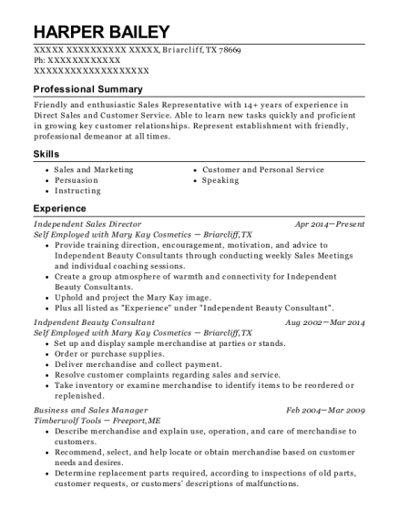mary kay cosmetics independent beauty consultant resume