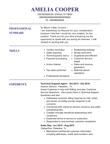 Technical Support Agent resume example Texas