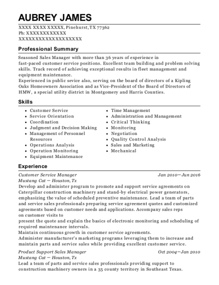 Customer Service Manager resume example Texas