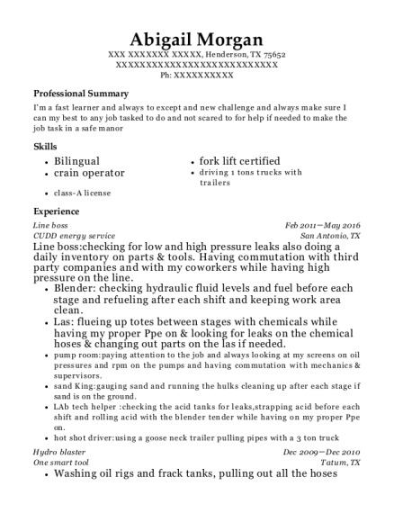 Line boss resume template Texas
