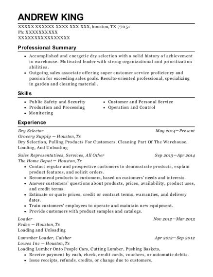 Dry Selector resume example Texas