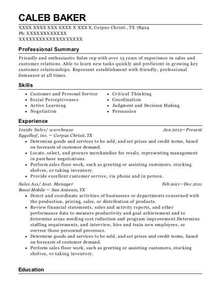 Inside Sales resume example Texas