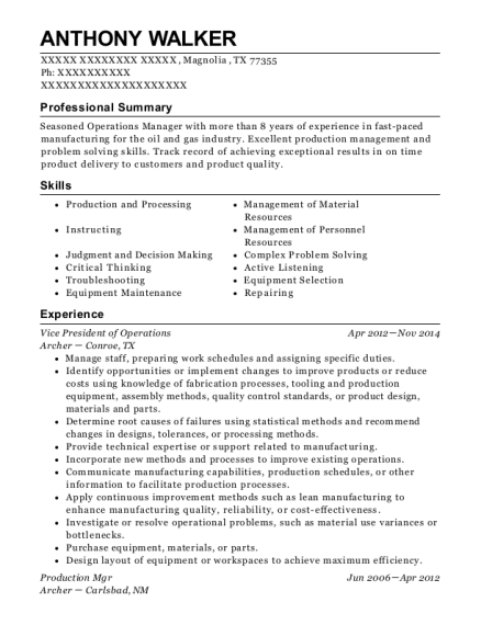 Vice President of Operations resume example Texas