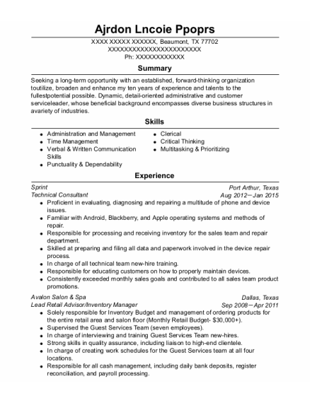 Technical Consultant resume template Texas