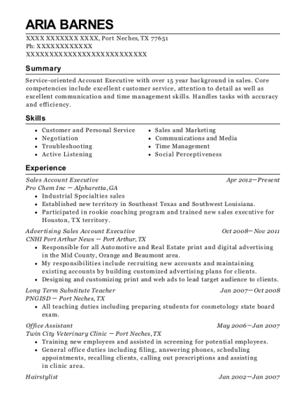 Sales Account Executive resume sample Texas