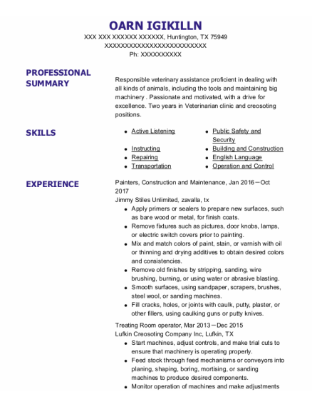 Painters Assistant resume sample Texas