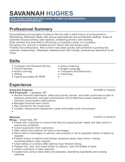 Domestic Engineer resume example Texas