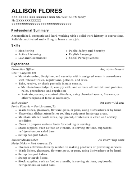 Correction Officer resume example Texas