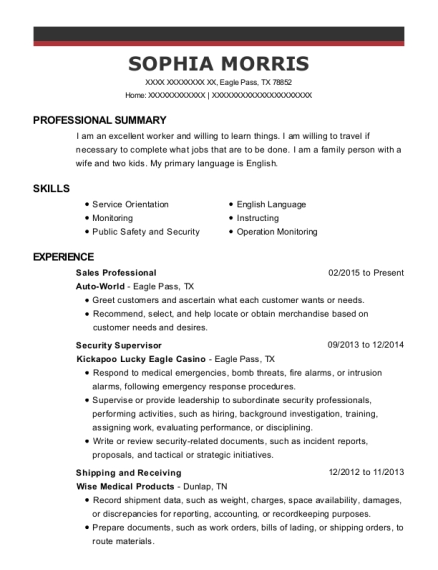 Sales Professional resume format Texas