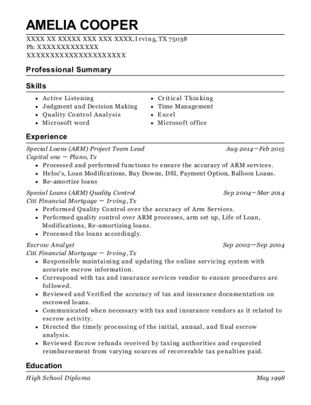 Special Loans Project Team Lead resume example Texas