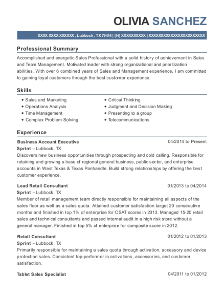 Business Account Executive resume template Texas
