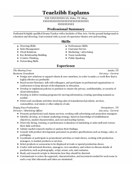 Business Consultant resume example Texas