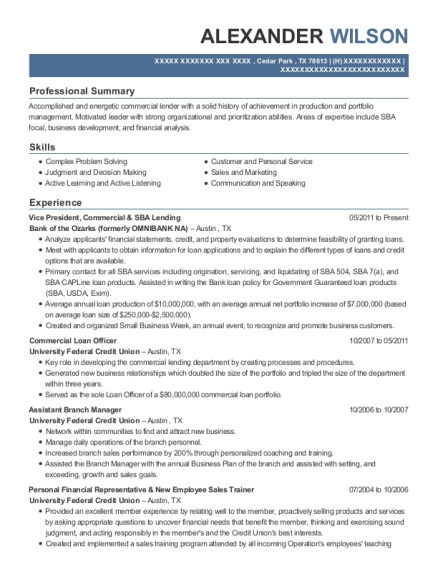 Vice President resume template Texas