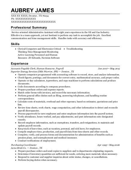Accounts Payable Clerk resume example Texas