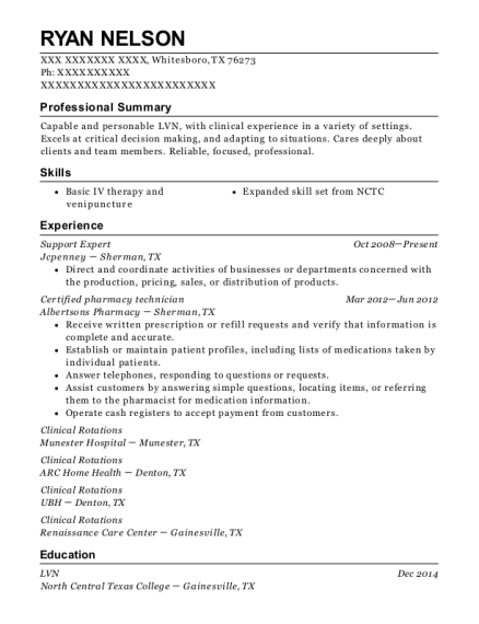 Support Expert resume example Texas