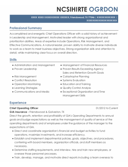 Chief Operating Officer resume template Texas