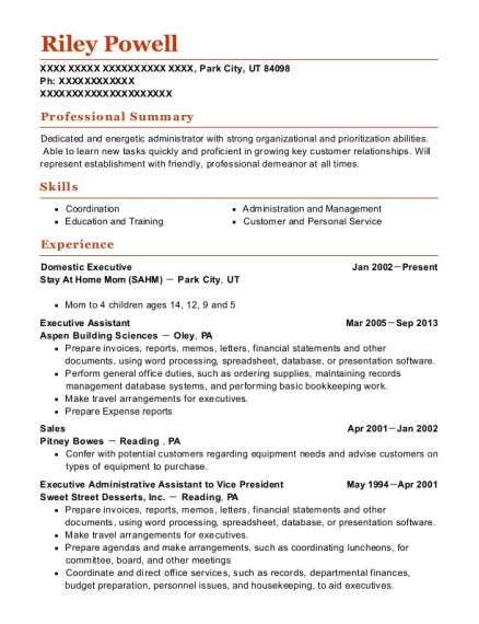 Domestic Executive resume sample Utah