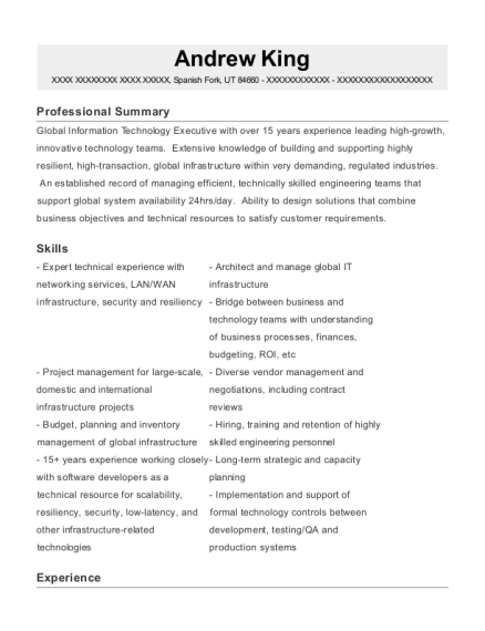 Senior VP IT resume template Utah