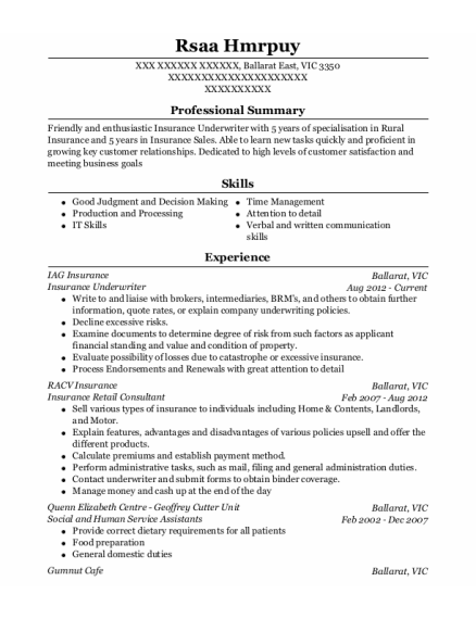 20 Best Insurance Underwriter Resumes Resumehelp