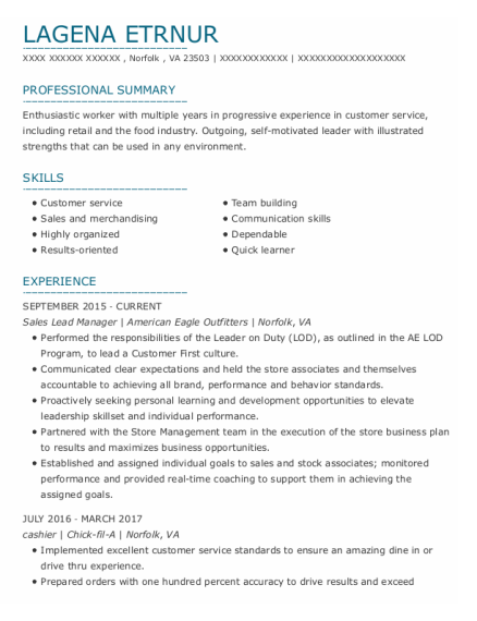 Sales Lead Manager resume example Virginia