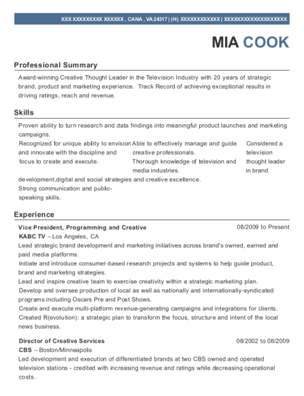 Vice President resume template Virginia