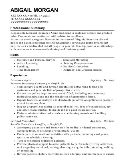 Insurance Agent resume template Virginia