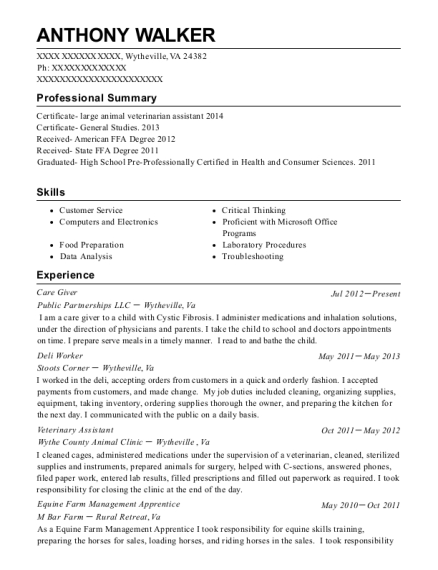 Care Giver resume example Virginia
