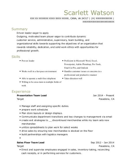 Presentation Team Lead resume template Virginia