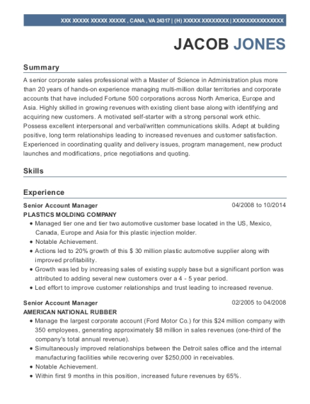 Senior Account Manager resume template Virginia