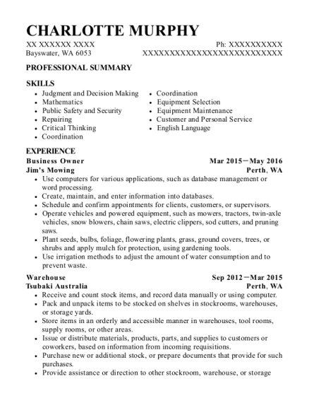 Business Owner resume template Washington