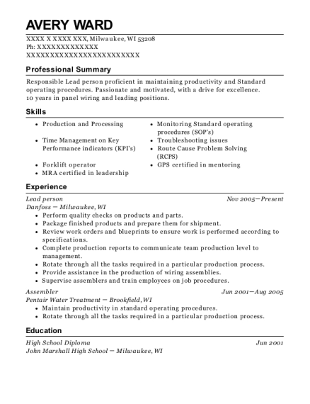 Lead person resume example Wisconsin