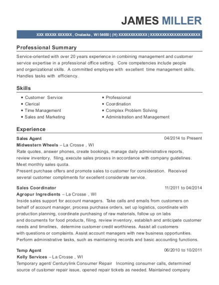 Sales Agent resume sample Wisconsin