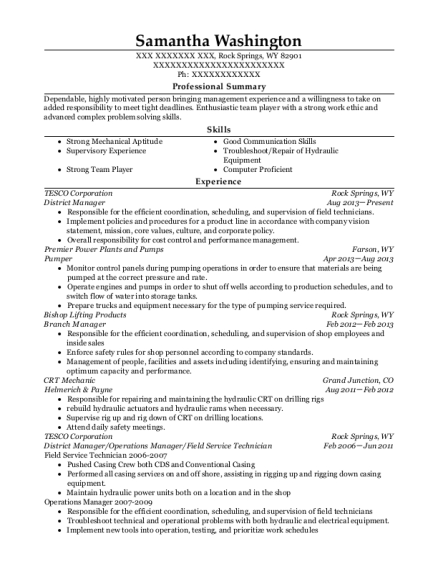 District Manager resume template Wyoming
